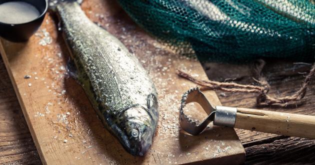 Hotel Gasthof zur Post frische Fische entschuppt