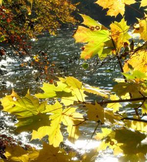 Hotel Gasthof zur Post Erntedank Herbst
