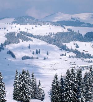 Hotel Gasthof zur Post Skigebiet Postalm